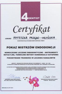 Agniszka_Przado_43